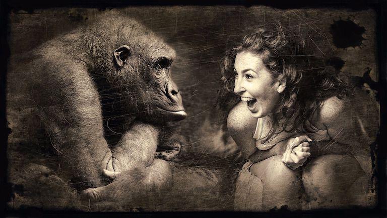 Gorilla és nő egymással szemben