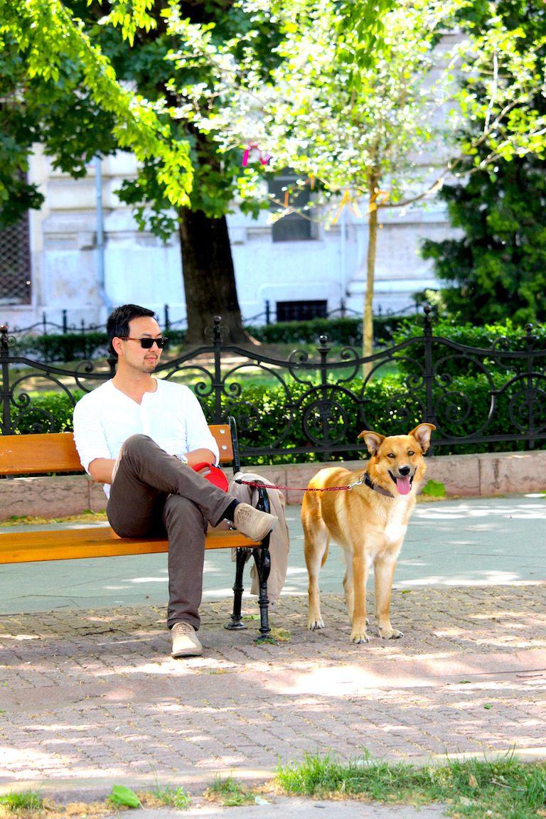 Edi kutya Nam mellett áll, aki a parkban ego padon ül