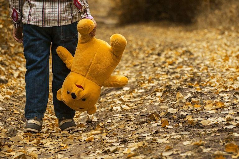 Gyermekkori trauma, idegrendszer, idegrendszer fejlődése, trauma, betegség, hiánytrauma