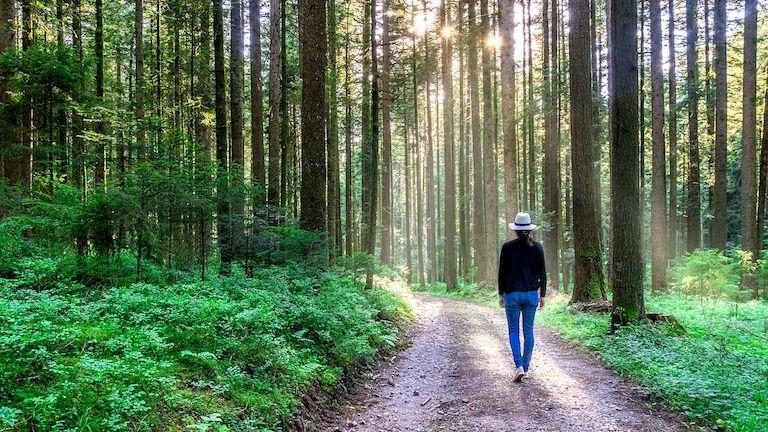 depresszió, depresszió kezelése, futás, séta, stressz, stresszlevezetés, stressz oldás, dühkezelés, düh levezetés, gyász