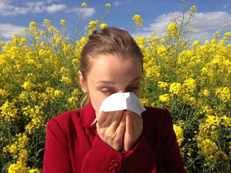 Allergia okai 1